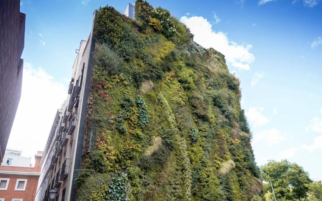 Jardín vertical Museo CaixaForum