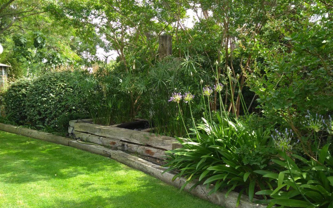 Jardín en Fuente el Fresno
