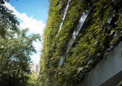 Jardín vertical Calle Pez Austral