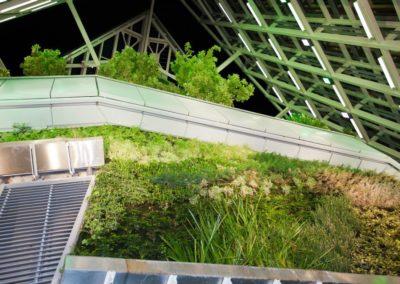Jardín Vertical Torre Cristal