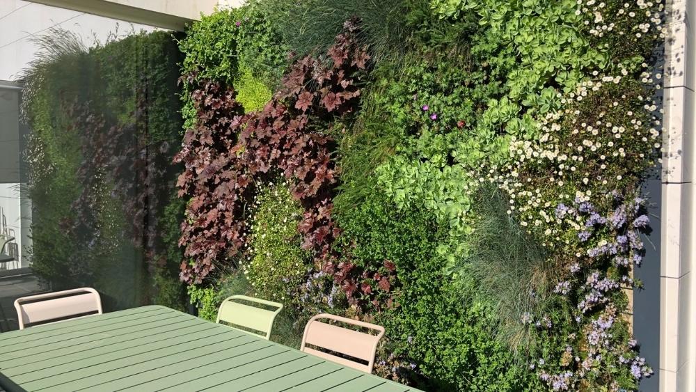 Beneficios de un jardín vertical.